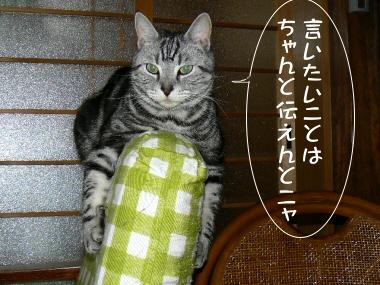 Tsutaento