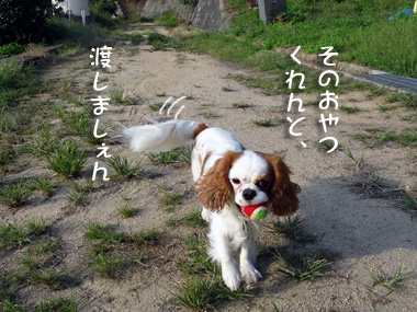 Ball_2