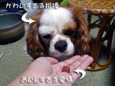 Tsukimi_2