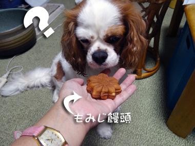 Tsukimi_3
