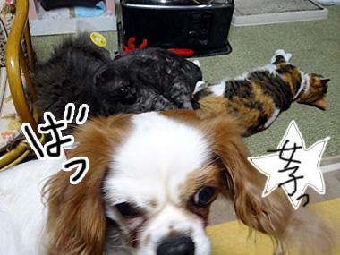 Jyoshi_2