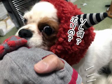Oni_3