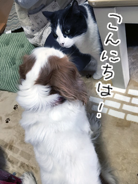 Friend_3