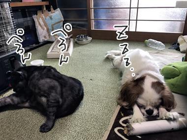 Nakayshi_3
