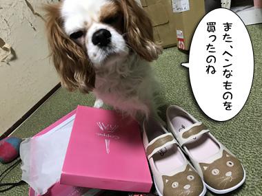 Shopping_2_3