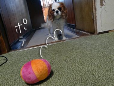 Ball_3