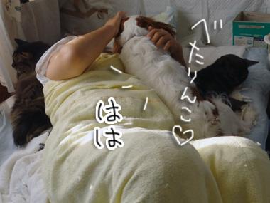 Hahaokoshi_2