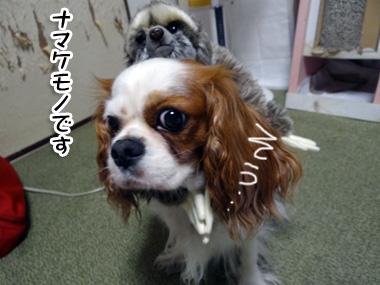 Namakemono_2