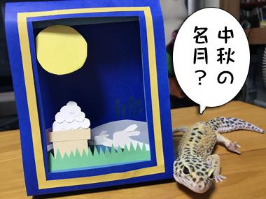 Tsuki_1